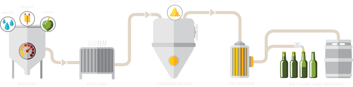 Diagram of The Brewing Process
